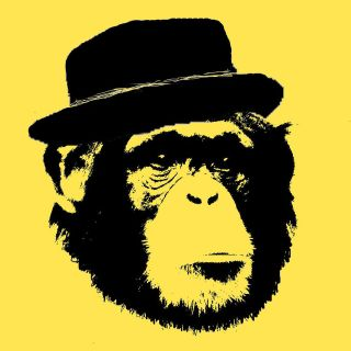 Hipster Chimp Chimpanzee indie pork pie hat monkey t shirt