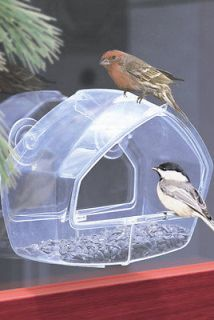 window bird feeder in Seed Feeders