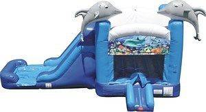 New Commercial Inflatable Bounce House Water Slide Combo Jump Dolphin