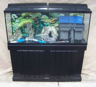 Complete 55 Gallon Fish Tank, Stand, Lights, Filter, and MORE