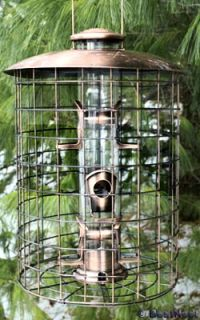 Woodlink Squirrel Proof Brushed Copper Bird Feeder