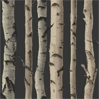 Gold Brown 31053 Birch Tree Forest Woods Fine Decor Wallpaper