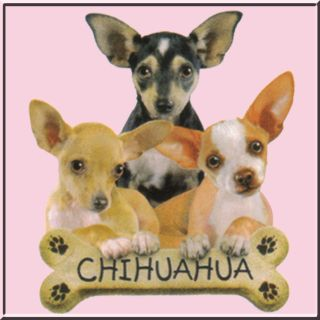 Chihuahua Puppies Dog w Bone French Terry Jacket Pink