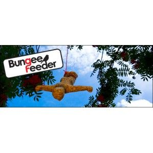 Bungee Bird Feeder Seed Food New Gifts Gadgets