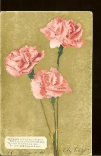 Long Stem Pink Carnations Flowers Poem Vintage Postcard