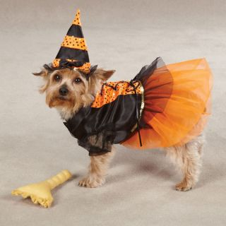 Halloween Dog Costume Casual Canine Spellhound Witch Dog Costumes XS s