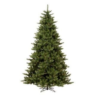 Vickerman Camdon Fir 5.5 Artificial Christmas Tree with Clear Lights