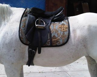 Light Blue Gold Chenille Brocade Baroque Dressage Saddle Pad