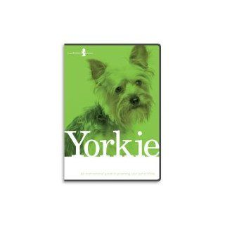 Yorkshire Terrier, Yorkie, Dog Grooming Instructional How