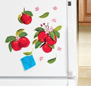 Sheet of 12 Apple Magnet Kitchen Refrigerator Freezer Fridge Magnetic