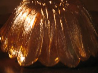 Vintage Indiana Glass Lily Pons Sunflower Bowl Golden Amber