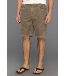 Quiksilver Waterman Collection Supertubes 4 Walkshort Mens Shorts (Beige)