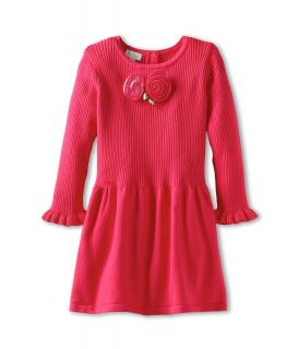 le top Girls Rose Garden Sweater Knit Drop Waist Dress Girls Dress (Pink)