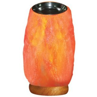 WBM # 1401 Aroma Therapy & Natural Air Purifying Himalayan Salt Lamp With Neem