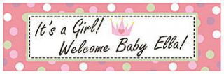 Baby Girl Personalized Vinyl Banner    72 x 202 Inches, Green, Red, Violet, White