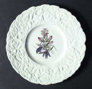 Royal Cauldon Woodstock Luncheon Plate, Fine China Dinnerware   Embossed Rim,Flo