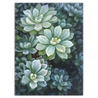 Uttermost 34227 Wall Art, Succulents Floral Painting